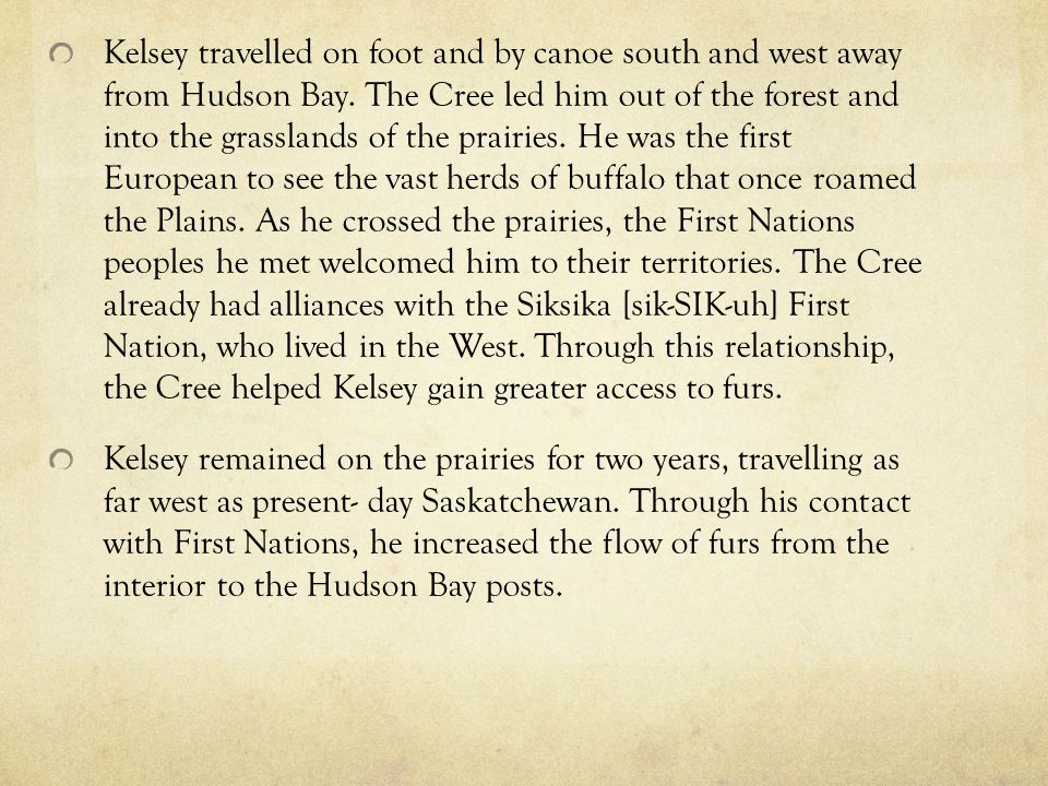 Kelsey travelled on foot and by canoe south and west away from Hudson Bay. The Cree led him out of the forest and into the grasslands of the prairies. He was the first European to see the vast herds of buffalo that once roamed the Plains. As he crossed the prairies, the First Nations peoples he met welcomed him to their territories. The Cree already had alliances with the Siksika [sik-SIK-uh] First Nation, who lived in the West. Through this relationship, the Cree helped Kelsey gain greater access to furs.